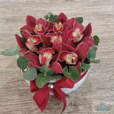 Orchidea Doboz